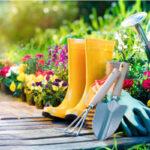 Gartenarbeit im Frühjahr