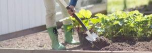 Gartenarbeit im Frühjahr Werkzeug