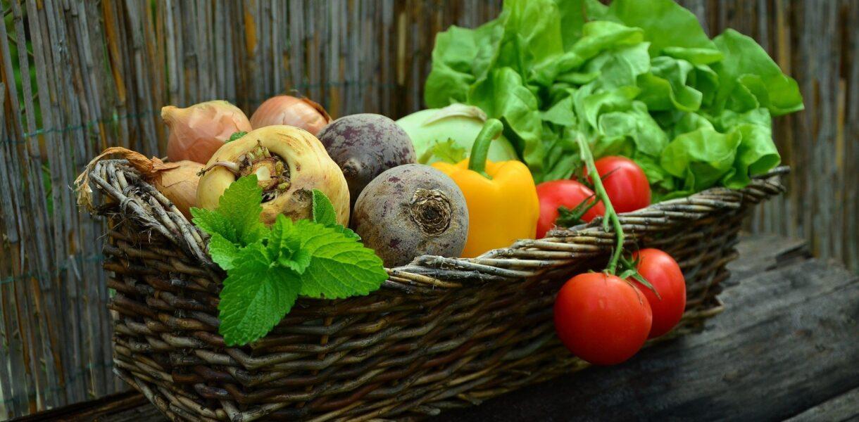 Korb Ernte Gemüse