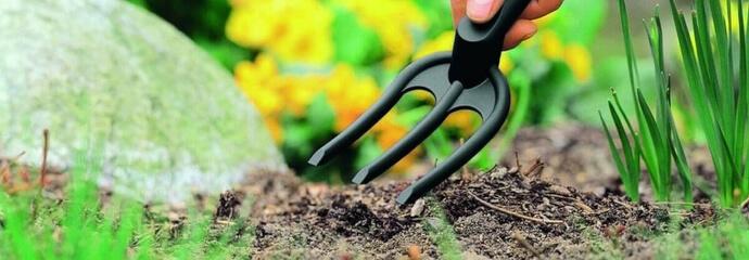Vorbereitung des Bodens