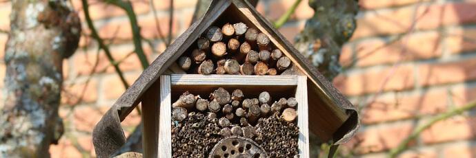 Bienenfreundliches Nest